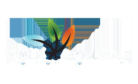 Logo Transparent - Coin Lavigne